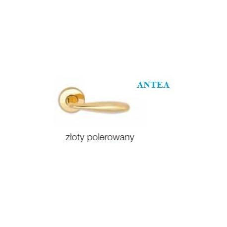 Klamka ANTEA szyld okrągły złoty polerowany